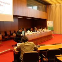 2nd Thematic Workshop, Geneva