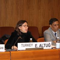 GFMD 2014-2015 Turkey Chair Esen Altug