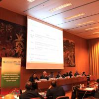 GFMD 2016 Meeting of the Steering Group