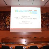 GFMD 2016 Meeting Steering Group Geneva