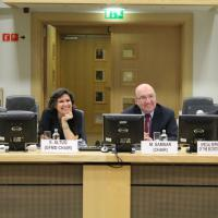 15 July 2015 - Brussels. Ad hoc GFMD Thematic Meeting on The Mediterranean Crisis in a Global Context: A New Look at Migration & Development Approaches