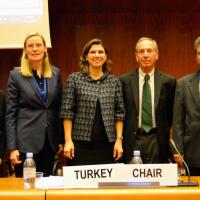 24 November 2014 - Geneva. Second Meeting of the GFMD Friends of the Forum