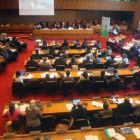 28 April 2015 - Geneva. Fourth Meeting of the GFMD Friends of the Forum