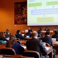 24 November 2014 - Geneva. Second Meeting of the GFMD Steering Group