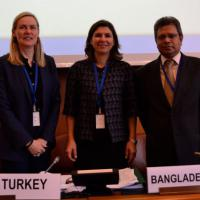 24 November 2014 - Geneva. Second Meeting of the GFMD Troika