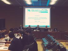 RT Session 2.1 - Moving beyond emergencies – Creating development solutions to the mutual benefit of host communities and displaced persons - 2nd February 2017