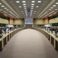 Ad hoc GFMD Thematic Meeting